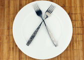 White plate, fork crosswise — Stock Photo