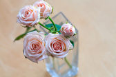 Pink roses in a vase on a wooden desk — Stock Photo