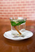 Mint tea with lemon and cinnamon — Stock Photo
