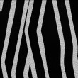 Zebra texture — Stock Photo #26979497