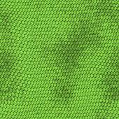 Green python snake skin texture background. — Stock Photo