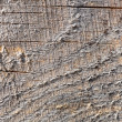 A background of wood — Stock Photo
