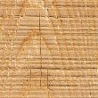 Background of brown wood texture close up — Stock Photo