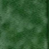 Yeşil çim dokusu — Stok fotoğraf