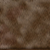 Brown dog fur texture — Stock Photo