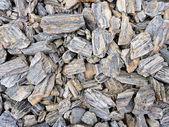 Tesxure of many small stones — Stock Photo
