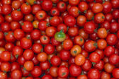 Green tomato on the background of the red tomatoes — Stock Photo