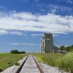 Rails and grain elevators — Stock Photo #8863097