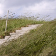 Stairs on a Dike — Stock Photo