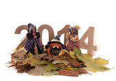 Halloween in the New Year — 图库照片