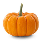 Pumpkin — Foto Stock
