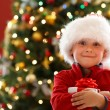 Boy with Christmas gift — Stock Photo #15798743