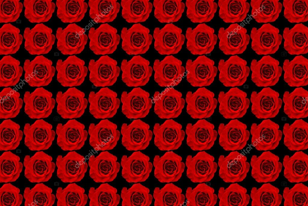 Red roses background — Stock fotografie #18694677