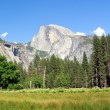 Half Dome — Stock Photo
