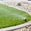 Sprinkler watering grass — Stock Photo #39328441