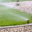 Sprinkler watering grass — Stock Photo #39328551