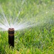 Stock Photo: Sprinkler watering grass