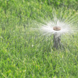 Automatic sprinkler — Stock Photo