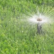 Stock Photo: Automatic sprinkler