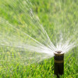 Automatic sprinkler — Stock Photo #40972177
