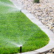 Sprinklers watering grass — Stock Photo #42546525