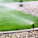 Sprinklers watering grass — Stock Photo #42546585