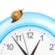 Grape snail climbing on a clock — Stock Photo #28695435
