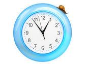 Uva caracol subindo em um relógio — Fotografia Stock