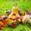 Halloween pumpkins in autumn leaves — Stock Photo