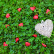 Stock Photo: Silver heart on green grass