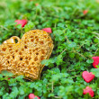 Stock Photo: Golden heart on green grass
