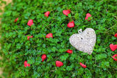 Silver heart on the green grass — Stock Photo