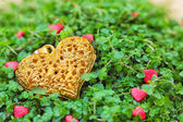 Golden heart on the green grass — Stock Photo