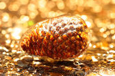 Pine cone covered with ice — Stock Photo