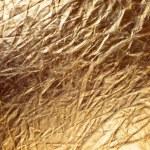 Texture of golden metallizic fabric — Stock Photo #40873801