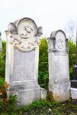 Old Jewish Cemetery in Chernovcy, Ukraine — Stock Photo