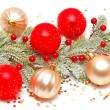 Christmas — Stock Photo #17416085