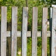 Fence — Stock Photo #33493461