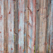 Fence — Stock Photo #33494081