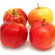 Apples — Stock Photo