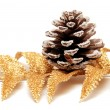 Branch of fir and pine cone — 图库照片