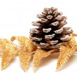 Stock Photo: Branch of fir and pine cone