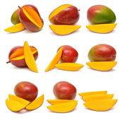 Collection of mango — Stock Photo