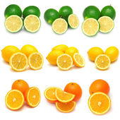 Collection of lemon, lime and orange — Stock Photo