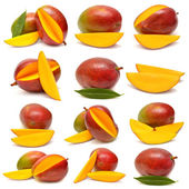 Collection of mango with leaf and slices  — Foto de Stock