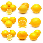 Collection of lemons  — Stock Photo