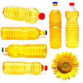 Sunflower and bottles of sunflower oil — Stock Photo