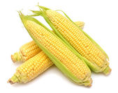 Ear of corn — Foto Stock
