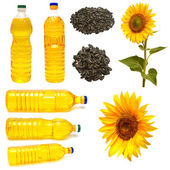 Sunflower seeds and bottle — Stock Photo