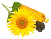 Sunflower oil, sunflower and seeds  — Stock Photo
